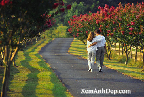 Romantic photos - Love images
