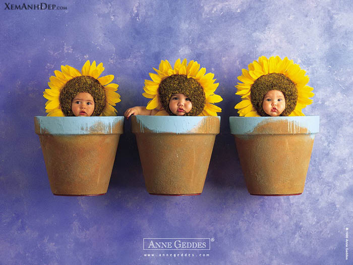 Children photos by Anne Geddes