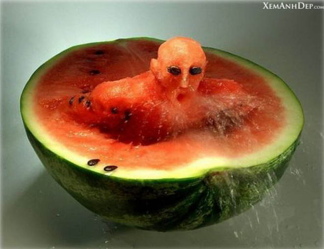 Creative pictures from fruits