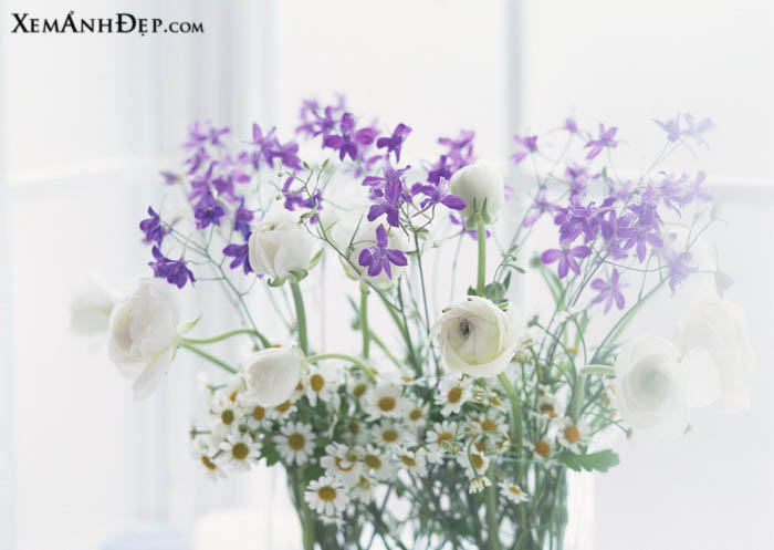 Beautiful flower arrangements photos