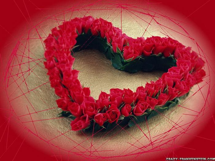 Ảnh Đẹp Hoa Tình Yêu Valentine