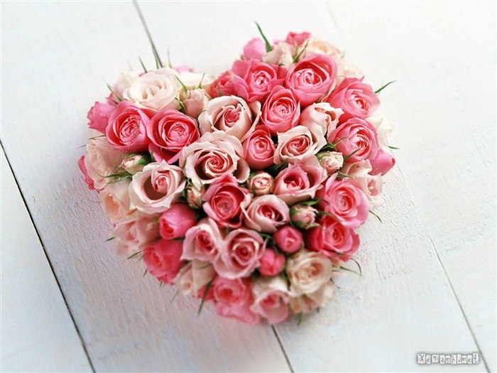 heart-flower pictures