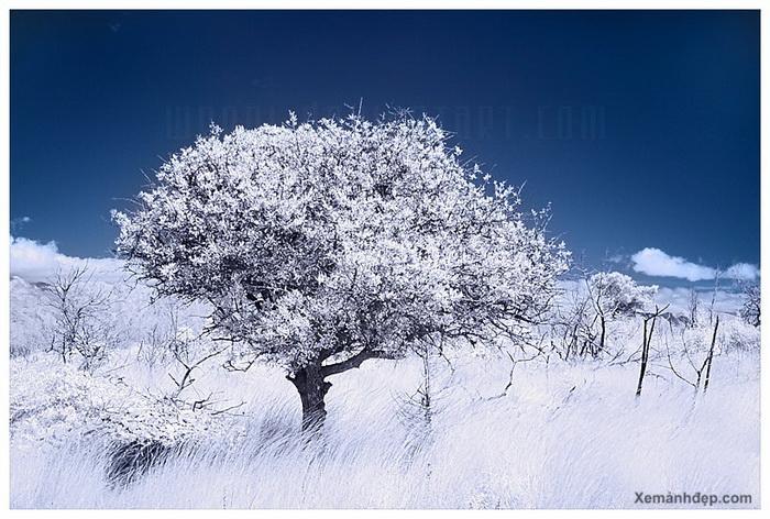 Amazing landscape photos