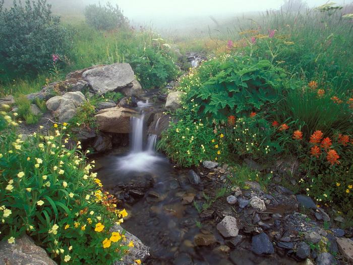 Ảnh đẹp thiên nhiên, phong cảnh đẹp