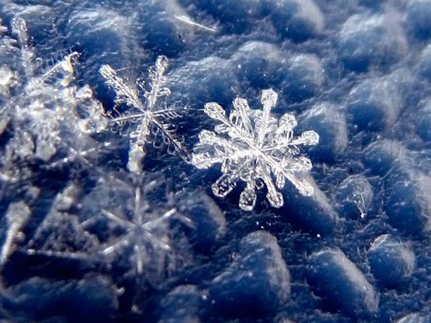 Ảnh bông tuyết đẹp