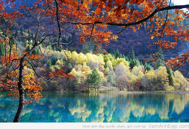 Phong cảnh đẹp Cửu Trại Câu