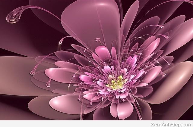 Hinh anh 3d hoa dep nhat