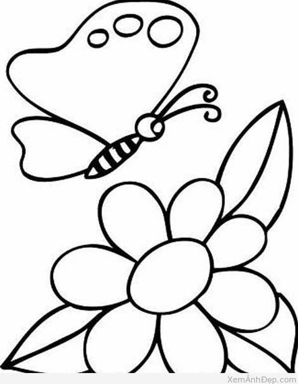 Tranh to mau buom hoa